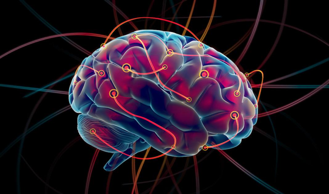 mintea unui medic