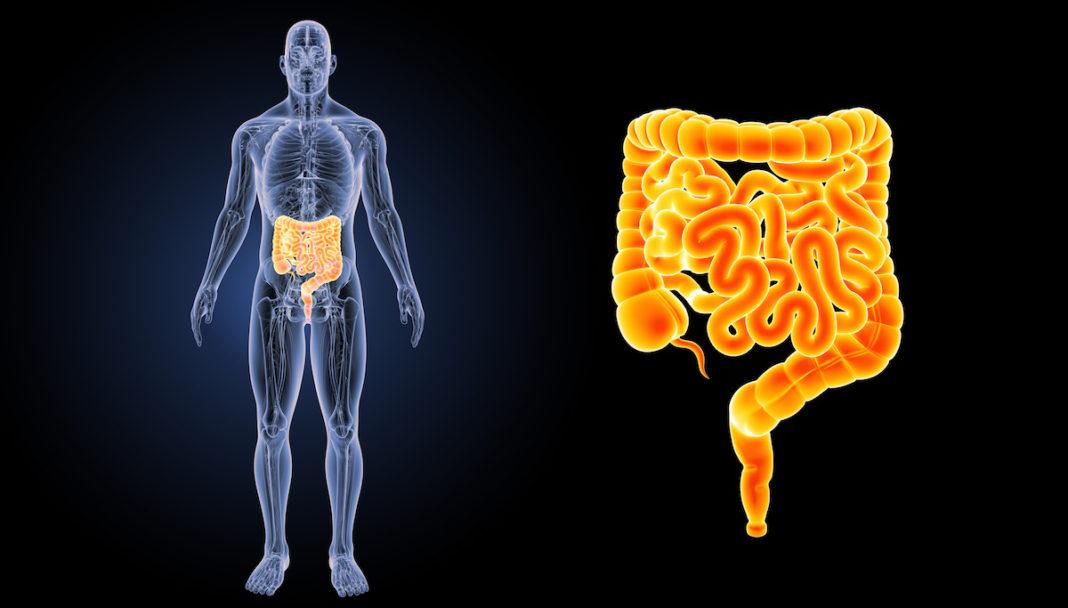 9 lucruri despre intestinul iritabil