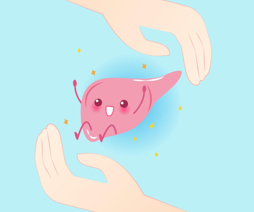 Mitul protectoarelor hepatice